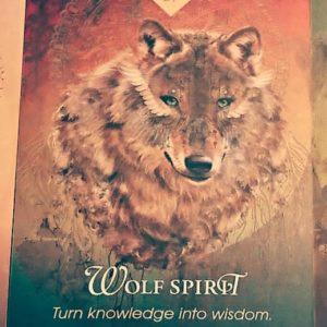 オオカミのスピリット